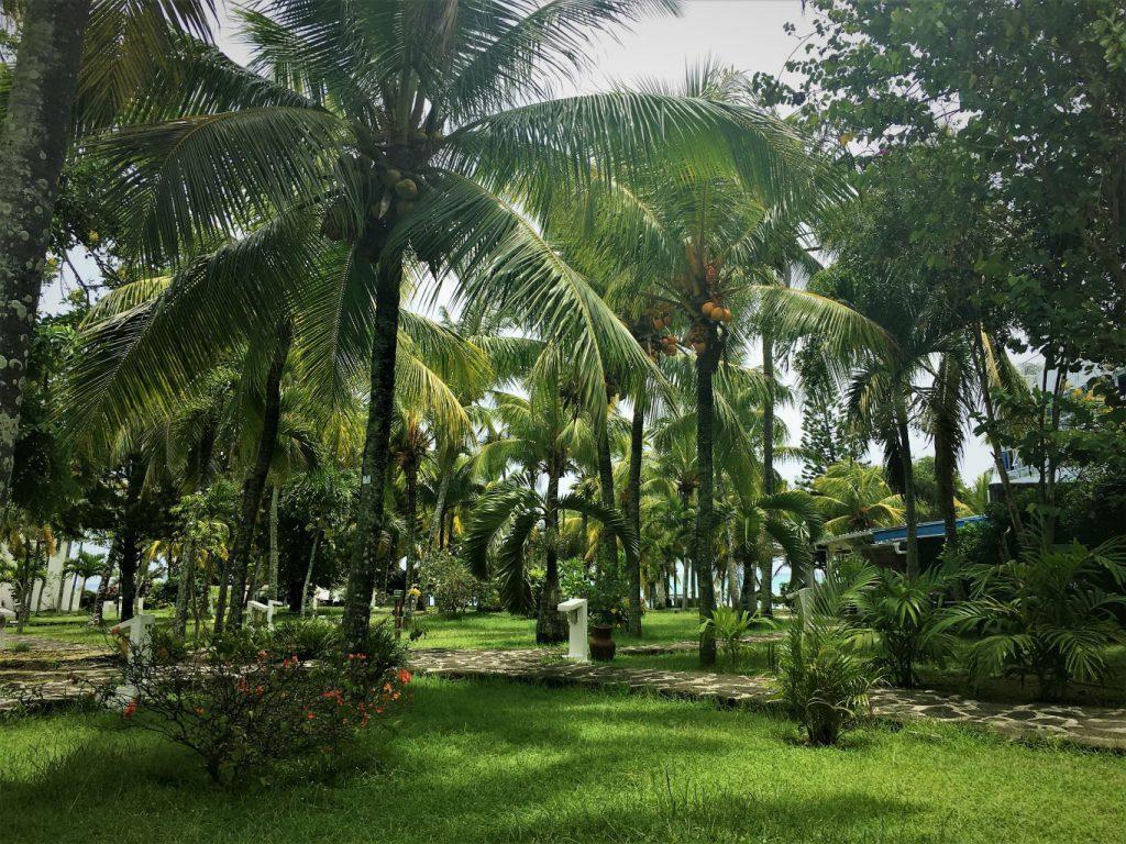 Mauritius_2019_02_09 (12)